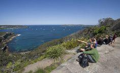 Spit Bridge to Manly Walk - Sydney Coast Walks Study Abroad, Australia Travel, Sydney, Bridge, To Go, Coast, Walking, Park, Beach