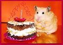 Geburtstagskarte mit einem Kuchen, einer Maus und der Nachricht: Happy B-Day
