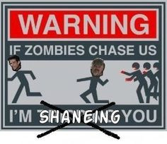 Walking Dead  funny. I would SO Shane you!