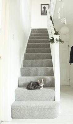 Pale grey stair carpet