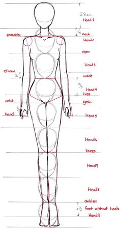 how to draw fashion illustration, Drawing the figure for fashion illustration, draw female body, drawing nude, drawing lesson:
