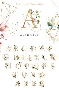 Sunny watercolor floral collection by Lisima on Watercolor Background, Watercolor Flowers, Floral Logo, Floral Design, Floral Letters, Flower Frame, Graphic Illustration, Floral Illustrations, Beautiful Artwork