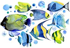 Margaret Berg Art: Tropical Fish: Blue