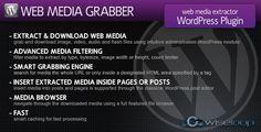 Web Media Grabber WordPress Plugin - https://codeholder.net/item/wordpress/web-media-grabber-wordpress-plugin
