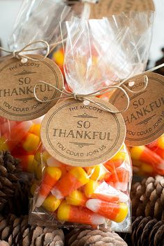 Thanksgiving Favors - 3 Thanksgiving Party Ideas - perfect goodie bags for kids and adults | Evermine Occasions | www.evermine.com