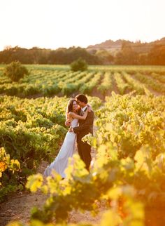 Vineyard photo. Would love to try this with Caeden !