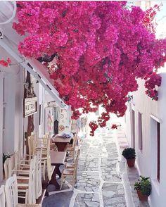 """좋아요 251.5천개, 댓글 1,373개 - Instagram의 Earthpix (@earthpix)님: """"Mykonos Greece  by @margarita_karenko"""""""