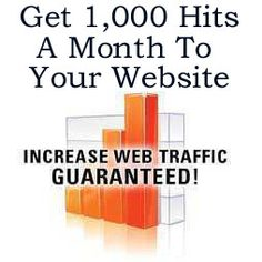 How to get 1,000 website hits a month http://fiverr.com/chivvy/show-you-how-to-get-3000-hits-a-month-to-your-website