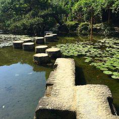 Прудик с мостиком в парке при святилище Хэйан-дзингу в Киото #Киото #сады #парки #японскийсад #Хэйан #Япония #лето #пруд #мостик #мост #камушки #кувшинки #лотосы #цветы #этоЯпония #мидокоро #путешествия