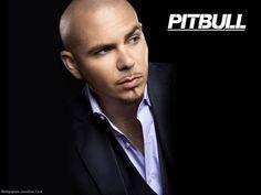 Pitbull wallpaper - Pitbull (rapper) Wallpaper (25094094) - Fanpop