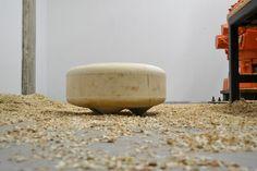 De bloco de madeira à peça de décor - Casa Vogue | Móveis