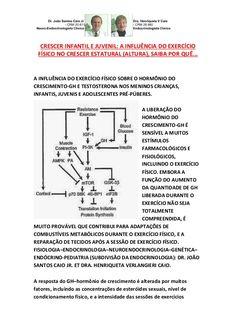INFLUÊNCIA DO EXERCÍCIO FÍSICO NO CRESCER ESTATURAL/ALTURA,SAIBA PORQUE by VAN DER HAAGEN via slideshare