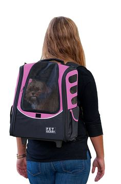 510 Best Cat Carriers And Strollers Images Cat Carrier Little