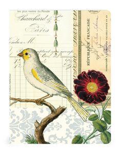 Resultados de la Búsqueda de imágenes de Google de http://www.flittybird.co.uk/media/catalog/product/cache/1/image/9df78eab33525d08d6e5fb8d27136e95/b/i/bird_note_book_2.jpg