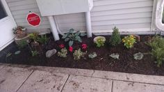 Spruced up entry complete with fairy garden!!