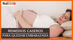 Remedios Caseros Para Quedar Embarazada - Fertilidad de la Mujer
