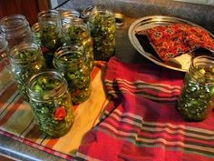 candied jalapenos and escabeche Canning Jars, Canning Recipes, Mason Jars, Candied Jalapenos, Ceviche, Preserves, Cooking Tips, Cucumber, Frozen