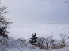 Ice shelf from the ridge, Trail 9, Indiana Dunes State Park, Chesterton, IN. Winter 2014.