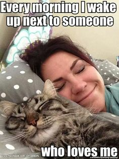 These cute kittens will make you happy. Cats are awesome companions. Cute Funny Animals, Funny Animal Pictures, Funny Cats, Cats Humor, Funny Humor, Cute Kittens, Cats And Kittens, Cats Bus, Crazy Cat Lady