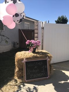 Girls country party ideas