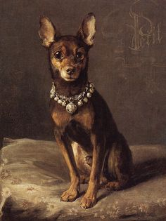Toy Terrier with Bell Collar by Charles van den Eycken, Belgian painter known for his still-life interiors with dogs & cats, 1859-1923