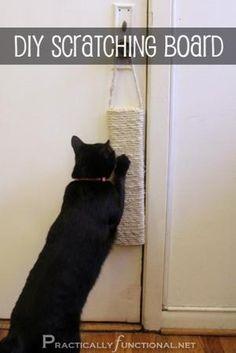 Leuk om zelf te maken voor de kat  :)