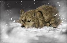 Wolf's Rain .:Hige:. by =WhiteSpiritWolf on deviantART