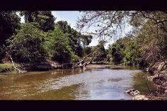 El arroyo que se le atravesó al Cerejón Water, Outdoor, Grow Taller, Tourism, Fotografia, News, Gripe Water, Outdoors, Outdoor Games