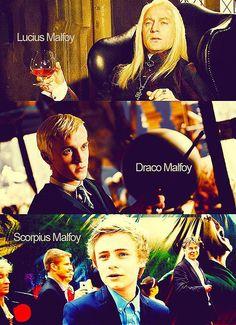 3 Generations of Malfoy Men