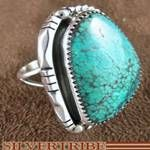 Native American jewelry is my favorite.  I have a ring just like this one.