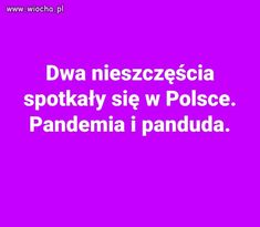 Everything And Nothing, Lol, Peace, Humor, Memes, Funny, Poland, Jokes, Humour