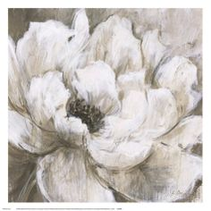 Peonies Blanche II Posters by Liv Carson - at AllPosters.com.au