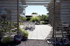Här har växterna egna rum - Trädgård - Göteborgs-Posten