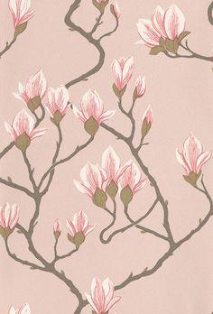 Magnolia wallpaper by Cole