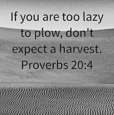 If you are too lazy to plow, don't expect a harvest.