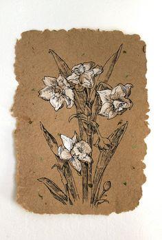 White Narcissus. Black Ink Drawing. Handmade by AugustArtStudio