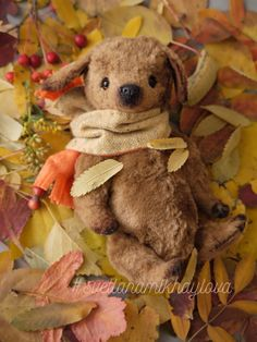 Dog handmadedog teddy bears такса