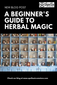 A Beginners Guide to Herbal Magic: A Wiccan Overview - Spells Healing Herbs, Medicinal Herbs, Natural Healing, Herbal Plants, Magic Herbs, Herbal Magic, Natural Medicine, Herbal Medicine, Holistic Medicine