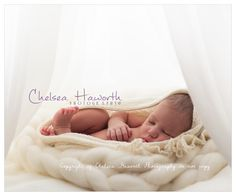Chelsea Haworth Photography Pregnancy, Newborn & Family Photographer in Auckland www.chelseahaworthphotography.co.nz
