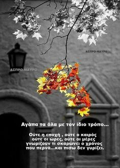 Greek Quotes, My Memory, Of My Life, Wise Words, Me Quotes, Memories, Word Of Wisdom, Intelligent Quotes, Famous Quotes