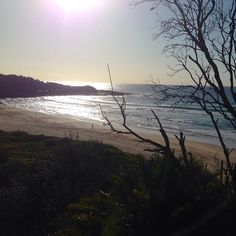 Another beautiful day in #sydney #freshwaterbeach