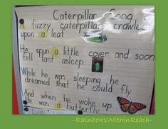 RainbowsWithinReach: Friday's Fine Motor Fun continuing series -- Caterpillar to Butterfly rhyme Preschool Songs, Preschool Curriculum, Kindergarten Literacy, Kids Songs, Classroom Activities, Spring Activities, Bug Songs, Classroom Ideas, Playgroup Activities