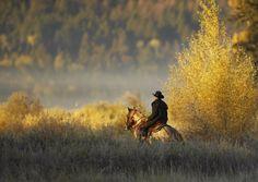 Cowboy <3