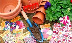 7 habits of successful gardeners.