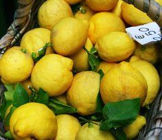 ...Liguria Lemon...   Explore amuleto20090's photos on Flick…   Flickr - Photo Sharing!