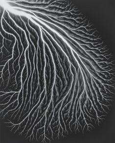 Hiroshi Sugimoto Japanese Contemporary Art, Shape Photography, Hiroshi Sugimoto, Sky Sea, Generative Art, Alcohol Ink Art, Chiaroscuro, 2d Art, Fabric Painting