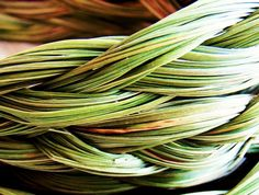 Sweetgrass Braid - Wild Crafted. $6.99, via Etsy. (I love the way Sweetgrass smells.)