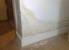 What is rising damp? Our rising damp specialists will spot the signs, causes and provide the best damp treatments to your property.