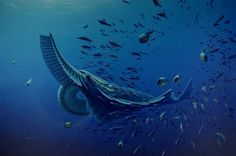 The Big Friendly Giants of the Cambrian Ocean | I Fucking Love Science