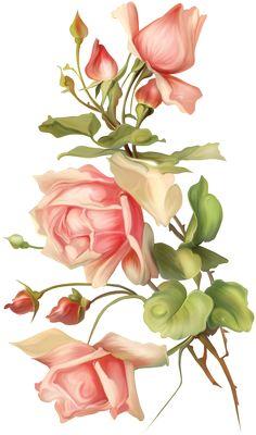 rose - Page 2 Decoupage Vintage, Decoupage Paper, Vintage Diy, Art Floral, Flower Images, Flower Pictures, Flower Art, Illustration Blume, Botanical Illustration